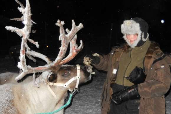 Husky owner, Sweden