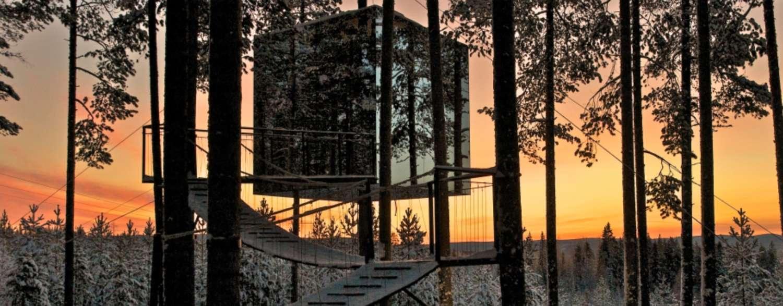 The Tree Hotel & Northern Lights in Abisko