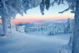 Snowy landscape in Sweden