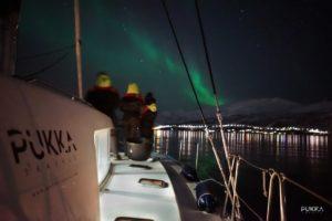 Luxury Catamaran Cruise Tromso