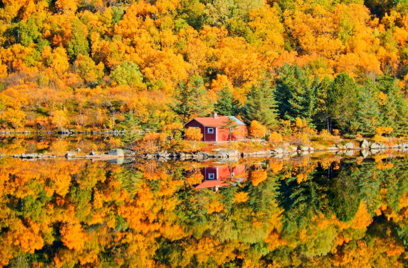 Lofoten Autumn Aurora Panorama and Fjords
