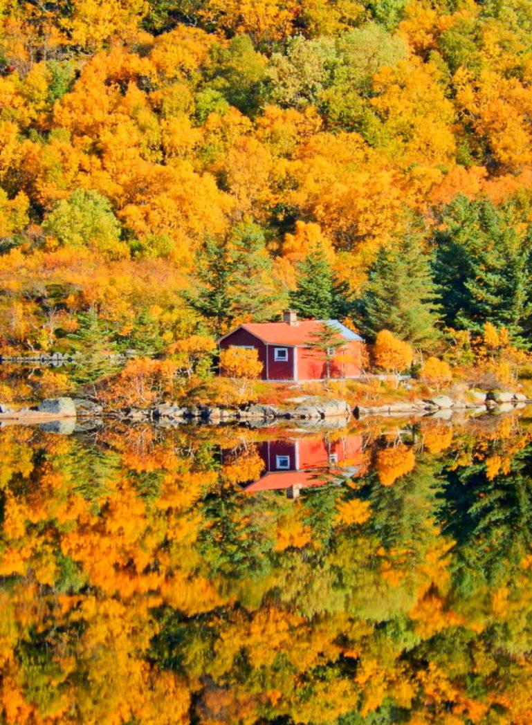 Autumn Aurora Adventures