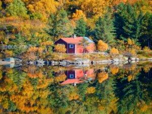 Autumn Colours Lofoten islands