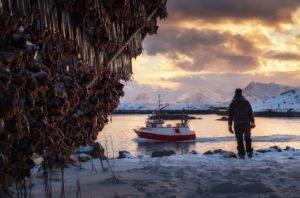 Fishing village Svolvaer Lofoten Norway Copyright Tommy Simonsen