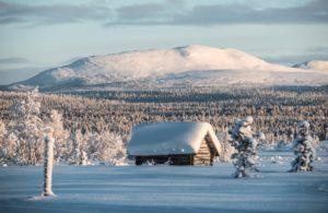 Pristine wilderness in Arctic Sweden