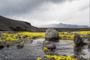 Oasis in the ash desert near Askja Volcano