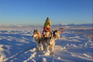 Iceland, Husky sledding