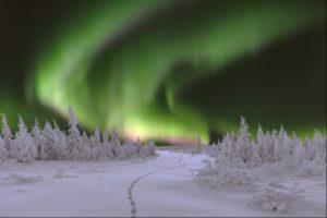 Northern Lights above snowy Swedish landscape