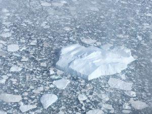 Greenland-Icebergs-Ilullissat